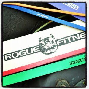 Rogue Monster Bands