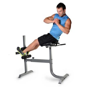 CAP Strength Roman Chair
