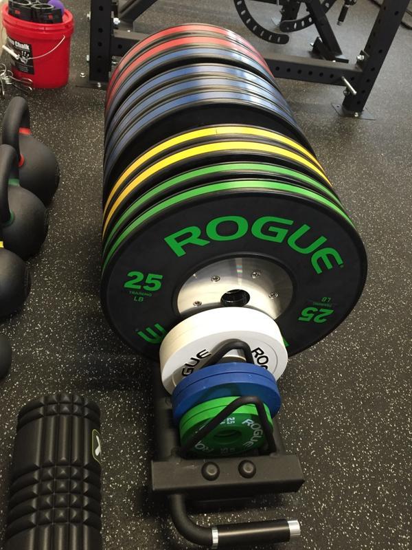 Rogue KG Black Training Bumper Plates