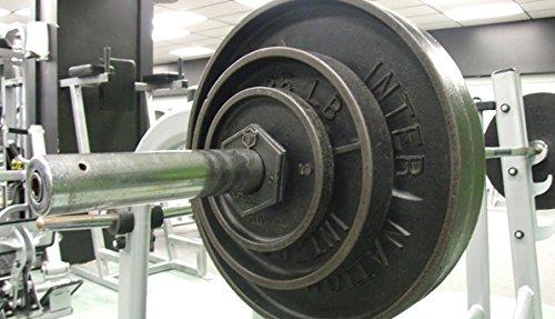 Iron Bull LB Fractional Plates