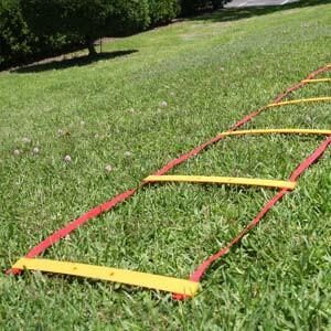 Fringe Speed & Agility Ladder