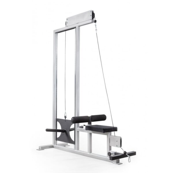 EliteFTS Scholastic Plate Loaded Lat Pulldown and Low Row