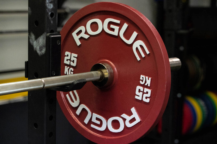 Rogue Calibrated Steel Powerlifting Plates Review (Plus 2-Year Update)