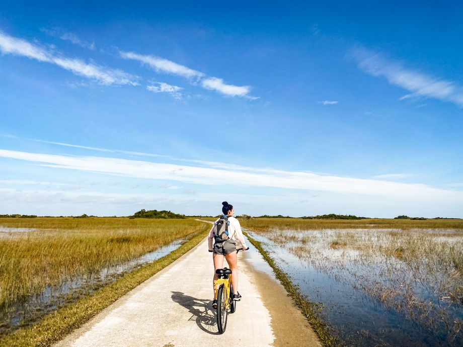 Biking outside on a road surrounded by wetlands - low impact exercise