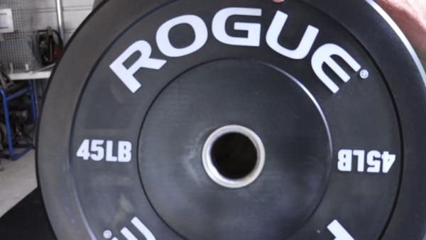 Rogue Echo Bumper Plates