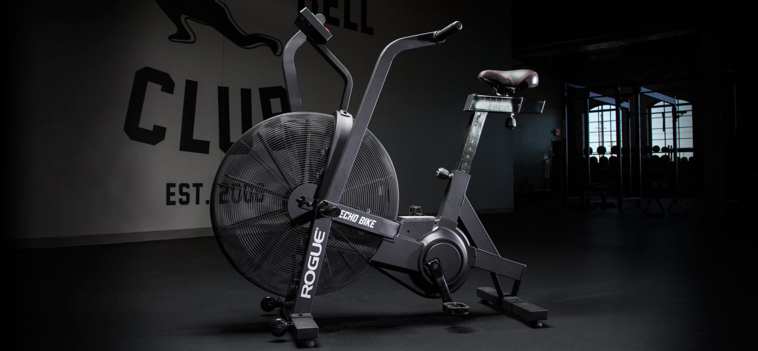 Rogue echo air bike released